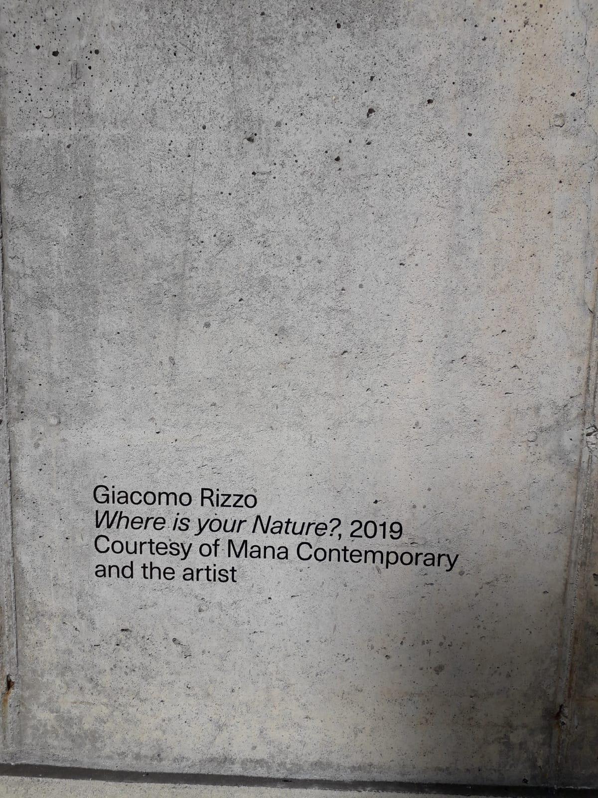 Giacomo_Rizzo_Where_is_your_nature_2019_Courtesy_ofMANA_and_Artist_MANA_Contemporary_NJ_7